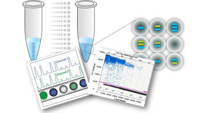 Xét nghiệm PCR nhân biết bệnh lậu là như thế nào? Có hiệu quả không?